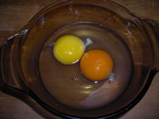 Pastured egg vs